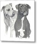 Dippy And Muggs Metal Print