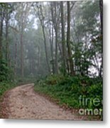 Dirt Path In Forest Woods With Mist Metal Print