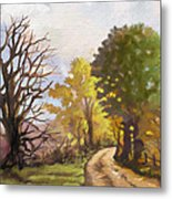 Dirt Road To Some Place Metal Print