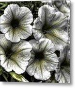 Dirty Flowers 2 Metal Print