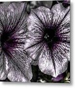 Dirty Flowers 4 Metal Print