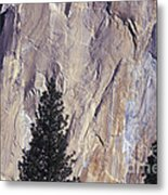 Disappearing Into The Wall - 2 Metal Print
