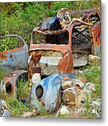 Disaster Metal Print