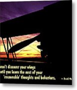 Discover Your Wings Metal Print