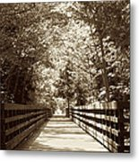 Discovery Metal Print by Heike Ward