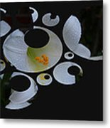 Disgruntled Lilly Metal Print