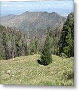 Distant View - Mount Lemmon Metal Print