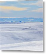 Distant View Of A Musk Ox And Snow Metal Print