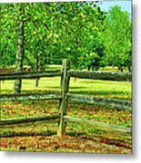 Do Not Fence Me In Metal Print