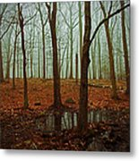 Do We Dare Go Into The Woods Metal Print by Karol Livote