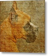 Do You Remember Me? Metal Print by Judy Wood