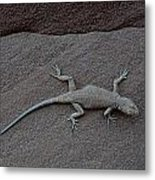 Do You See Me Metal Print by Carrie Putz