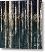 Dock Pilings Metal Print