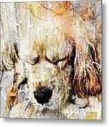 Dog 391-08-13 Marucii Metal Print