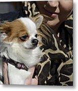 Dog And True Friendship 2 Metal Print