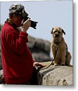 Dog Being Photographed Metal Print
