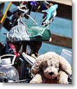 Dog Bike Metal Print