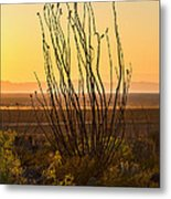 Dog Canyon Sunset Metal Print