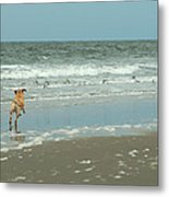 Dog Day Beach Metal Print