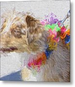 Dog Daze 5 Metal Print