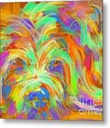 Dog Matze Metal Print
