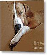 Dog - Mr. Oliver Snoozing Metal Print