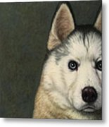 Dog-nature 9 Metal Print by James W Johnson