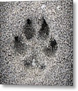 Dog Paw Print In Sand Metal Print