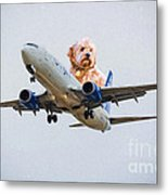 Dog Pilot Metal Print