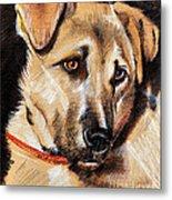 Dog Portrait Drawing Metal Print