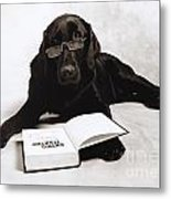 Dog Reading James Thurber Metal Print