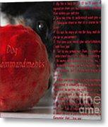 Dog Ten Commandments Metal Print