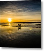 Doggy Sunset Metal Print
