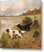 Dogs On The Scent Metal Print