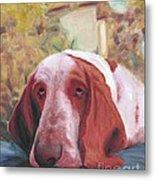 Dog's Portrait No 1 Metal Print