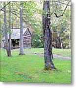 Dogwood Cabin Metal Print
