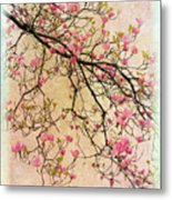 Dogwood Canvas 3 Metal Print