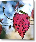 Dogwood Leaf - Red Leaf Falling With Watching Buds Metal Print
