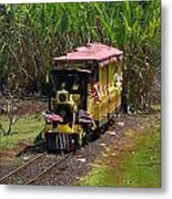 Dole Planation Metal Print