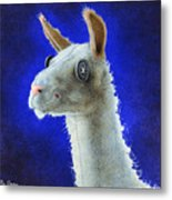 Dolly Llama... Metal Print