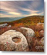 Dolly Sods Wilderness D30019870 Metal Print