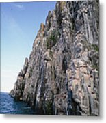 Dolomite Cliff With Guillemot Colony Metal Print