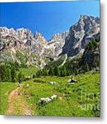 Dolomiti - Contrin Valley Metal Print