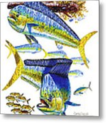 Dolphin In Weedline Metal Print
