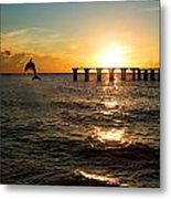 Dolphin Jumping Out Of The Sea In Florida Metal Print