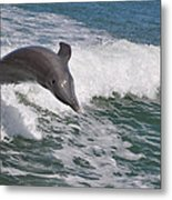 Dolphin Riding The Waves Metal Print