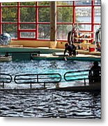 Dolphin Show - National Aquarium In Baltimore Md - 1212107 Metal Print by DC Photographer