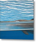 Dolphin Show - National Aquarium In Baltimore Md - 121211 Metal Print by DC Photographer