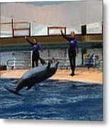 Dolphin Show - National Aquarium In Baltimore Md - 1212139 Metal Print