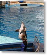 Dolphin Show - National Aquarium In Baltimore Md - 1212145 Metal Print by DC Photographer
